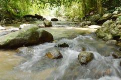 rivier die bij cataract en water het bespatten in bos stromen stock fotografie