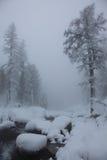 Rivier die door de Altai-Bergen vloeit Royalty-vrije Stock Foto