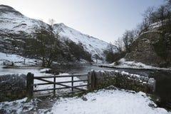 Rivier die door sneeuw behandeld de Winterlandschap vloeien in bos va Stock Afbeeldingen