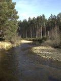 Rivier die Loch Morlich, Avimore tegenkomen Royalty-vrije Stock Foto