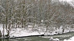 Rivier door het de Winterbos stock videobeelden