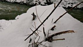 Rivier door het de Winterbos stock footage