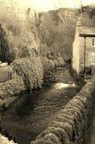 Rivier door het dorp van het land Royalty-vrije Stock Afbeeldingen