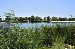 Rivier Ebro, Delta Royalty-vrije Stock Fotografie