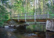 Rivier in een bos met een oude brug stock foto's