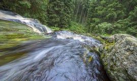 Rivier in een bos, Sumava Royalty-vrije Stock Fotografie
