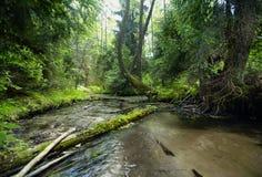 Rivier in een diepe vallei Stock Foto