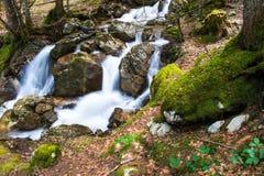 Rivier in een Franse berg stock foto