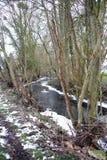 Rivier, een kleine rivier in het platteland in het midden van de gebieden royalty-vrije stock afbeeldingen