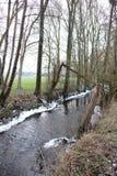 Rivier, een kleine rivier in het platteland in het midden van de gebieden stock afbeelding