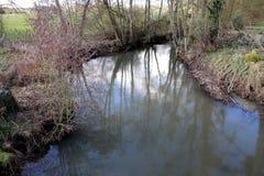 Rivier, een kleine rivier in het platteland in het midden van de gebieden stock foto's