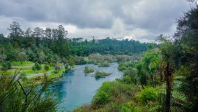 Rivier een overgang bos stock fotografie