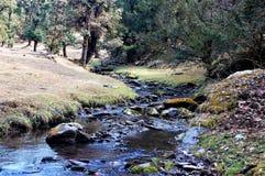 Rivier en boomlandschap dat mooi kijkt stock fotografie