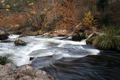 Rivier en de herfst Stock Fotografie