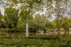 Rivier en park Royalty-vrije Stock Foto's