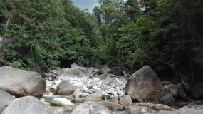 Rivier en rotsen in het midden van het bos royalty-vrije stock foto