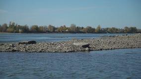 Rivier en steenstrand dichtbij het dorp stock videobeelden