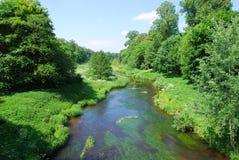 Rivier en weelderig groen Stock Foto