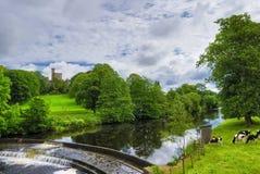 Rivier in Engels platteland Stock Afbeeldingen