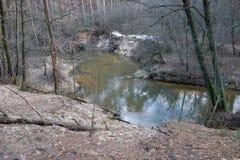 Rivier in het bos Stock Afbeelding