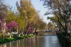 Rivier in het centrum van Tashkent, Oezbekistan royalty-vrije stock foto's