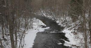Rivier in het de winterbos in de middag stock video