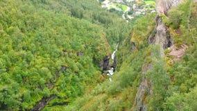 Rivier in het midden van dicht groen bos stock video