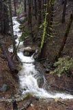 Rivier in het Nationale Park van Yosemite Royalty-vrije Stock Afbeelding