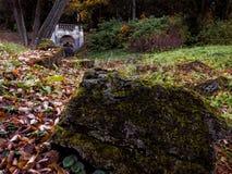 Rivier in het Park Stock Foto