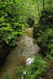 Rivier Hornad onder rotsen in Slowaaks Paradijs stock foto