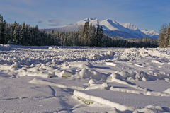Rivier-ijs en Berg Royalty-vrije Stock Foto