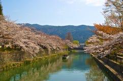 Rivier in Kyoto Stock Foto's