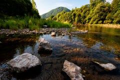 Rivier lage waterspiegel in de zomer Royalty-vrije Stock Foto