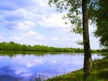 Rivier, land met bomen royalty-vrije stock afbeelding