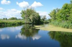 Rivier, land met bomen en bewolkte hemel Royalty-vrije Stock Fotografie