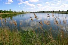 rivier landschap royalty-vrije stock afbeeldingen