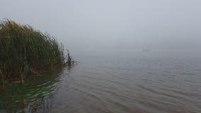Rivier met mist stock videobeelden