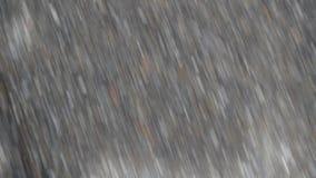 Rivier in mistige dag, waterspiegel rustige scène, boomreflectio in vijver stock videobeelden