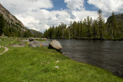 Rivier in Nationaal Park Yellowstone Stock Foto