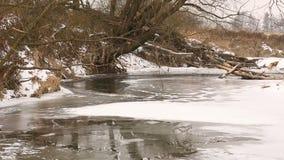 Rivier Odra die Oder als binnenlandse die delta door de bossen van het alluviale gebied en de weiden van het moerasland in de win stock footage