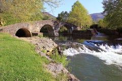 Rivier onder een brug Stock Afbeelding