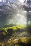 Rivier onderwaterrotsen op een ondiep rivierbed stock foto's