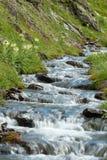 Rivier op Zwitserse Alpen Stock Foto