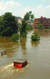 Rivier Overstroming Stock Afbeeldingen