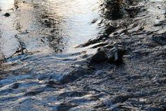 Rivier | Platteland Stock Afbeelding