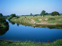 Rivier Severn Vyrnwy Confluence Shropshire England Royalty-vrije Stock Foto