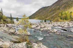 Rivier Shumi Multinskiyemeren De herfstlandschap van Altaibergen Stock Afbeelding