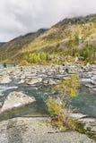 Rivier Shumi Multinskiyemeren De herfstlandschap van Altaibergen Stock Afbeeldingen