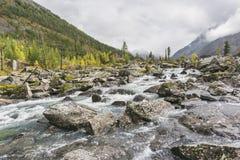 Rivier Shumi Multinskiyemeren De herfstlandschap van Altaibergen Royalty-vrije Stock Foto