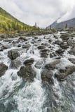 Rivier Shumi Multinskiyemeren De herfstlandschap van Altaibergen Royalty-vrije Stock Afbeelding